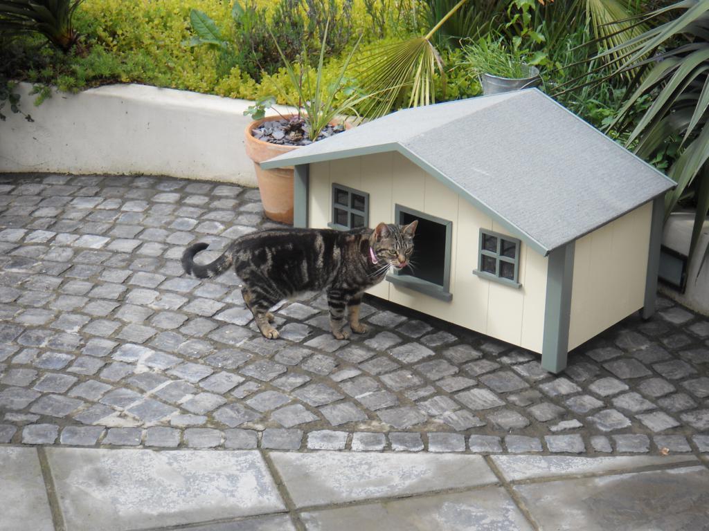 Custom handmade cat houses luxury pet homes - Luxury outdoor dog houses ...