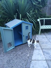 2-teir Beach Style cathouse