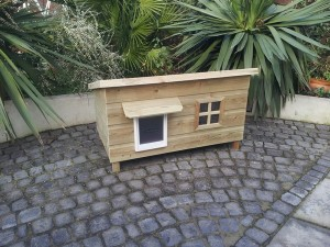 LARGE LODGE CATHOUSE