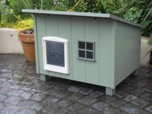 shed cathouse