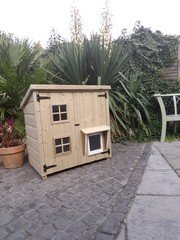 22-tier Lodge Style cathouse