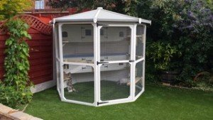 9ft-white-octagon-enclosure-6