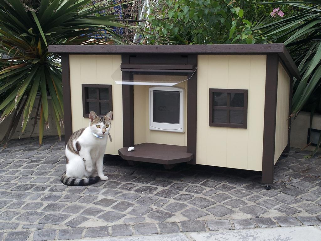 Pin Emily Luxury Outdoor Cat House Country Life On Pinterest